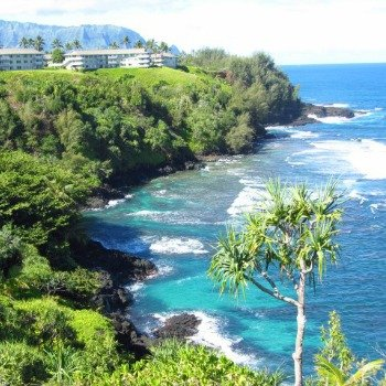 Coastline Views From Honu Point