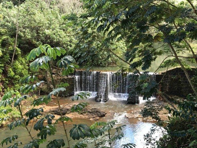 Wai Koa Stone Dam, 2017
