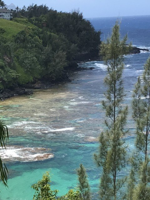Princeville Coastline - May 2017