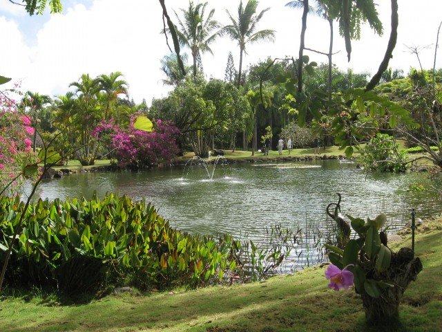 Na Aina Kai Gardens   Kauai. In 1991 The Dotys Designed And Incorporated  The International Desert Garden Into The Last Section Of Their U201cbackyard.u201d