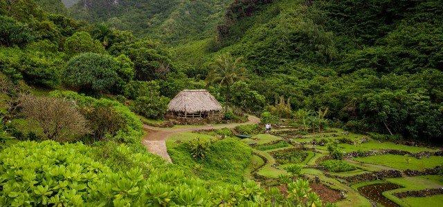 What To See On Kauai - Limahuli Valley - Kauai - Hawaii