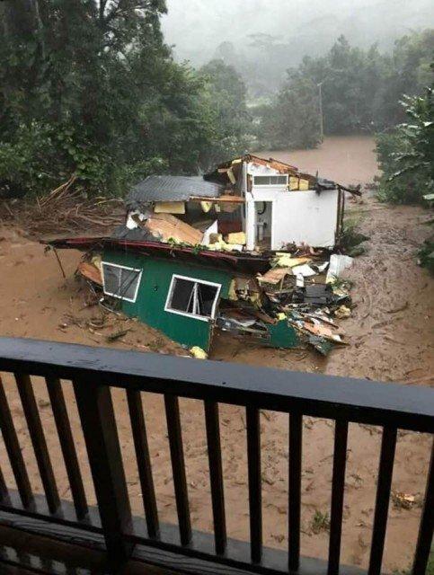 2018 Flood - Miki Miller 2