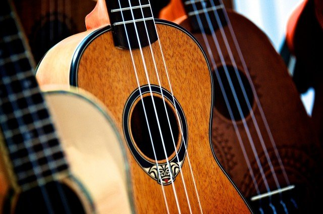 Kauai Ukulele And Arts Festival -Princeville - Hawaii